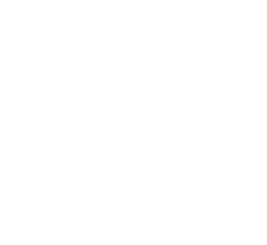 The Village Gallery